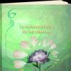 la-metamorfosis-de-las-plantas.png