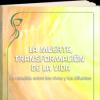 la-muerte-como-transformacion-de-la-vida.png