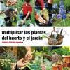 multiplicar-las-plantas-del-huerto-y-el-jardin-siembra-division-esquejado.jpg