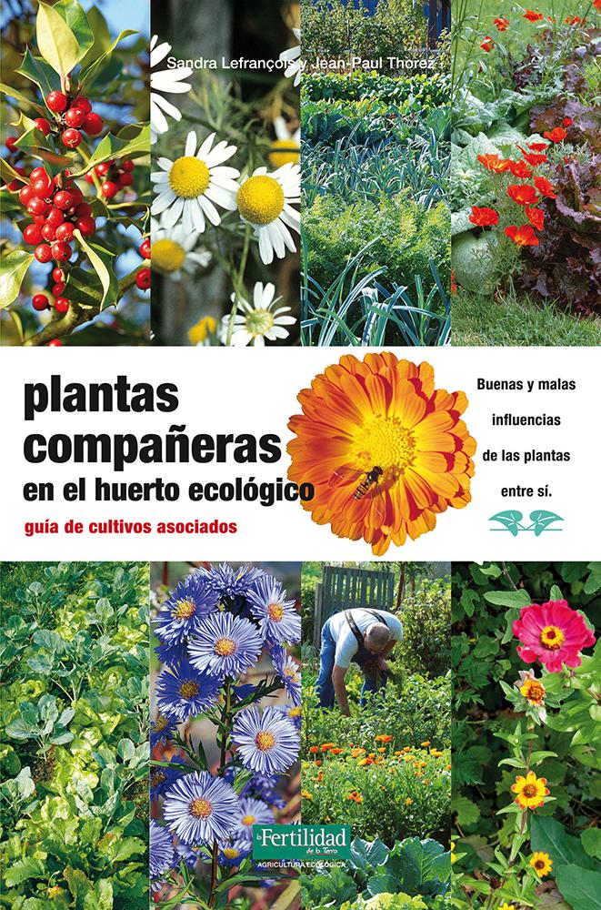 plantas-companeras-en-el-huerto-ecologico-guia-de-cultivos-asociados